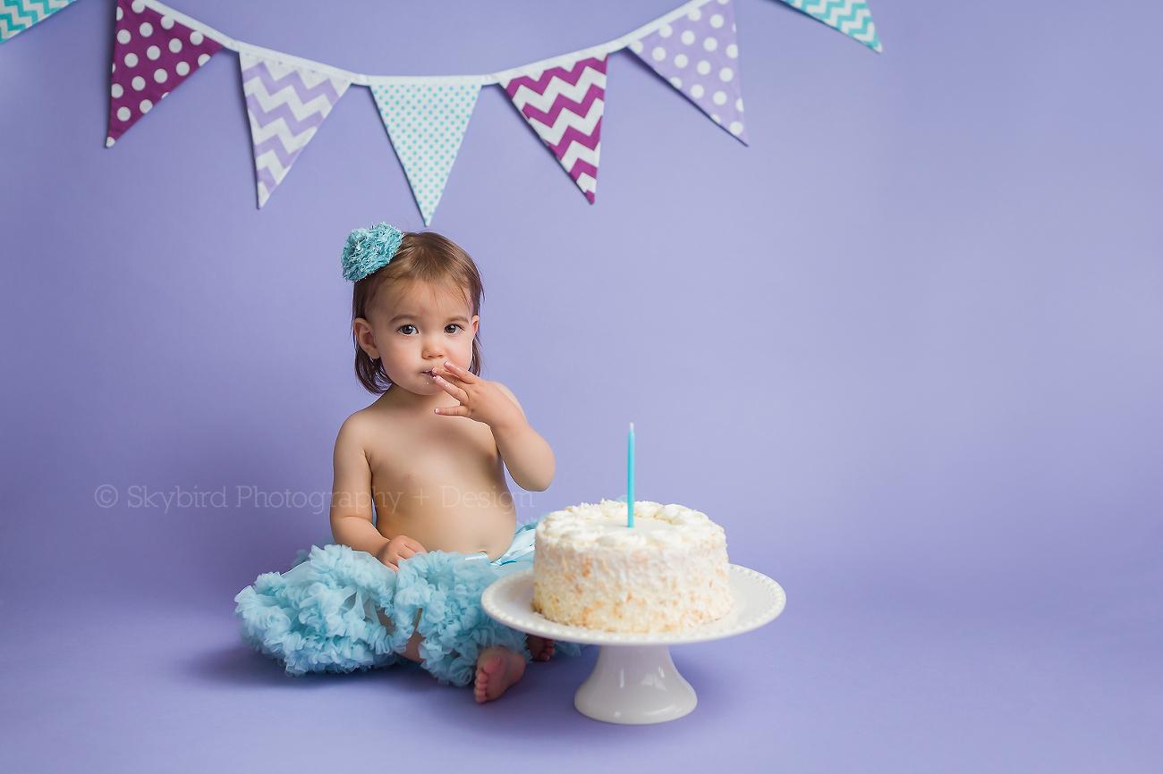 Prime Cake Smash Archives Skybird Photography Design Llc Birthday Cards Printable Trancafe Filternl